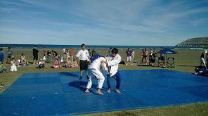 beach judo
